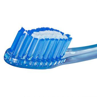 Jordan Target Teeth & Gums